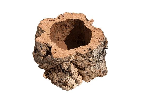 Een kleine pot (100mm)